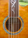 image for photo: Dragonfly soundhole closeup