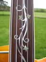 image for photo: Dragonfly fingerboard closeup