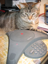 image for photo: Charlie on a conf call